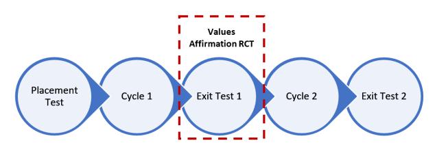 Values Affirmation.PNG